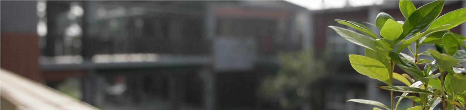 slider image 403